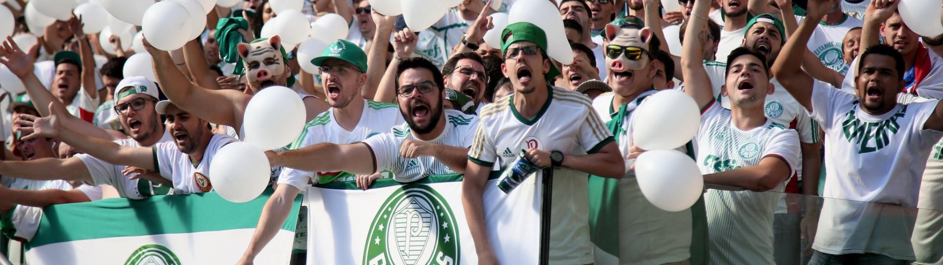 Torcida do Palmeiras incentiva o time contra o Botafogo em jogo no Allianz Parque