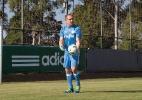 Palmeiras chega a acordo verbal com Crefisa e deve receber R$ 19,5 milhões