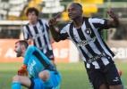 Camilo, Sassá, de volta ao Nilton Santos... Botafogo tem boas notícias