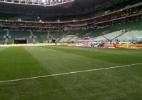 Palmeiras confirma jogo contra o Linense no Allianz Parque - Diego Salgado/UOL