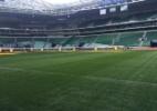 Cancelamento de show no Allianz Parque é comemorado no Palmeiras
