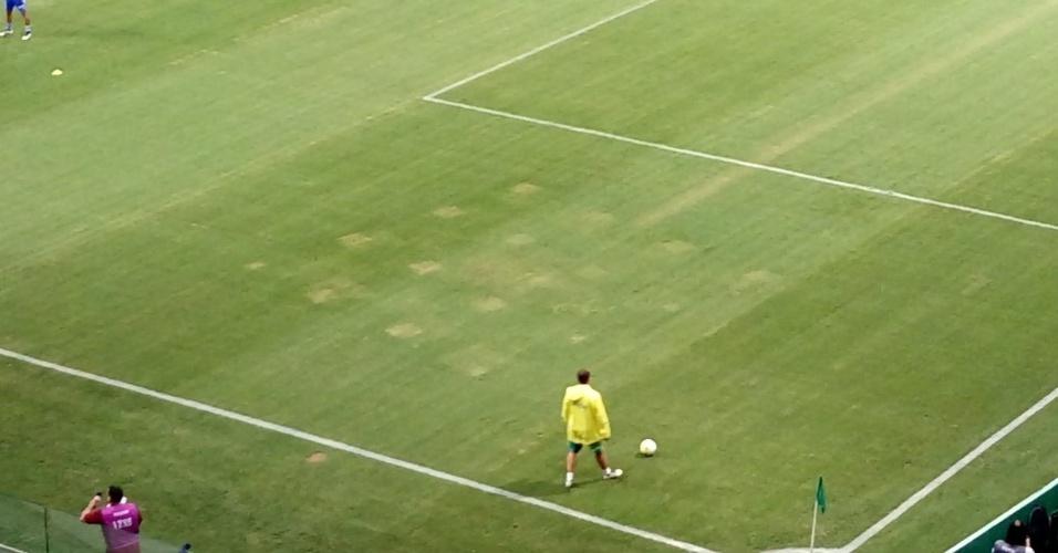 Palmeiras gramado Allianz Parque buracos