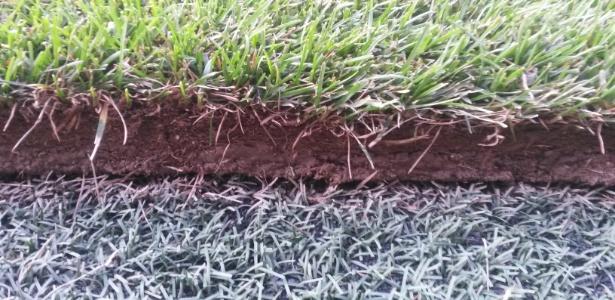 Situação do gramado do estádio onde o Brasil vai enfrentar os Estados Unidos