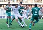 Palmeiras volta à Vila pela primeira vez após