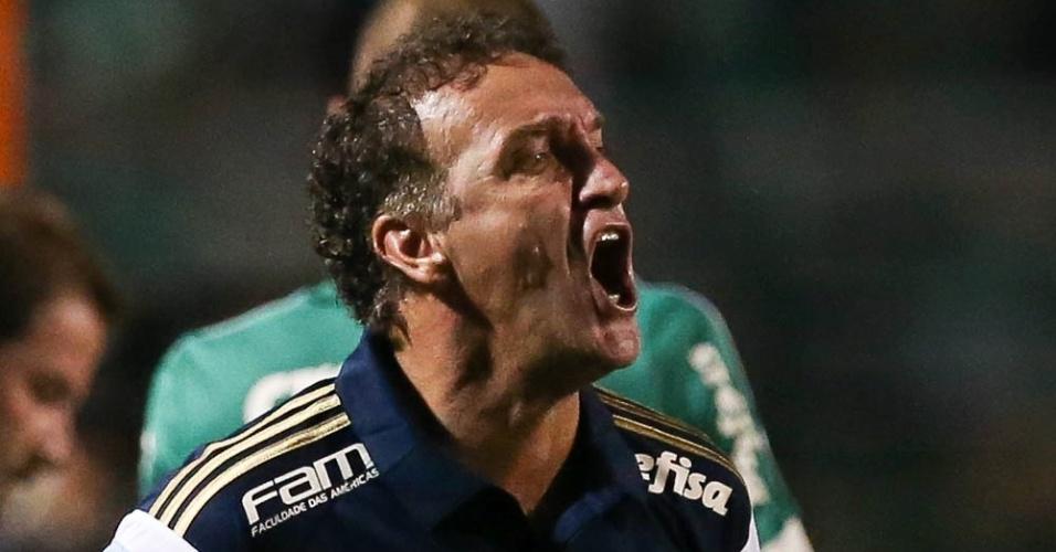 Cuca em ação no comando do time do Palmeiras no duelo com o Rio Claro