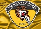 Carioca começa com escalações irregulares e apenas um reserva no Tigres - Reprodução