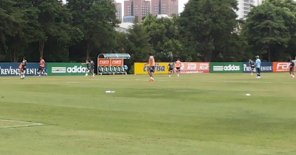 Marcelo Oliveira comanda treino do Palmeiras na Academia de Futebol