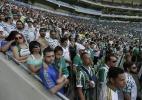 Média de público do Palmeiras no Brasileiro quase triplica em cinco anos