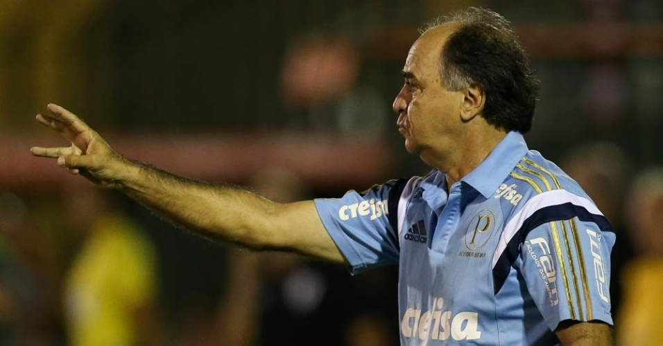 Marcelo Oliveira orienta os jogadores do Palmeiras durante a partida contra o River Plate-URU