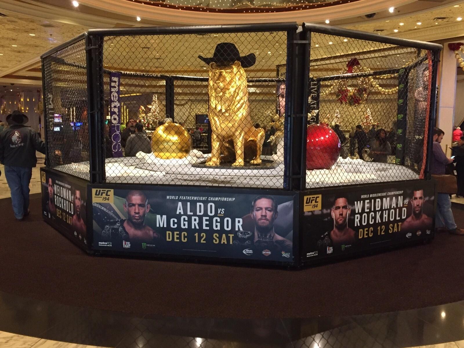 O famoso leão do MGM Grand Hotel, em Las Vegas, tem um chapéu de caubói desta vez, por conta do campeonato norte-americano de rodeio