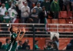Palmeiras é multado em R$ 5 mil por sinalizadores; Grêmio paga R$ 10 mil - Ale Cabral/AGIF