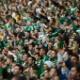 Palmeiras x Figueirense: 15 mil ingressos vendidos e setor esgotado