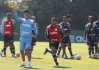 Palmeiras faz 1º treino técnico após quedas no Paulista e na Libertadores