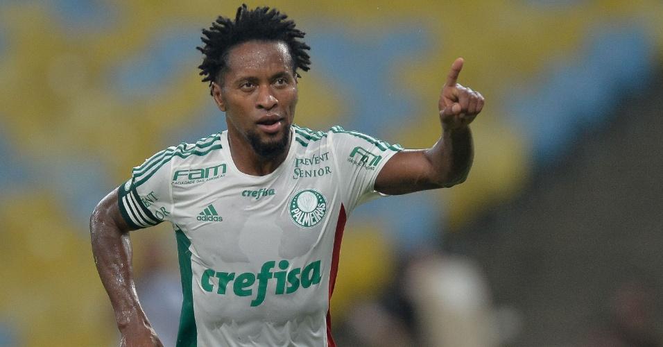 Zé Roberto celebra após marcar em cobrança de pênalti para o Palmeiras contra o Fluminense pela Copa do Brasil