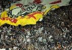 Com marca negativa, Corinthians é batido por Palmeiras em média de público
