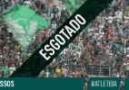 Em 24 horas, torcida do Coritiba esgota ingressos para decisão na Arena - Divulgação/Coritiba