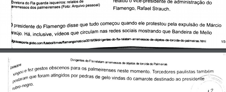 Processo Flamengo Palmeiras parte 2 reprodução