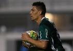 Moisés conquista torcida com bom desempenho e quer renovar com o Palmeiras
