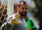Nova lesão muscular devolve Diego Cavalieri ao departamento médico - Nelson Perez/Fluminense