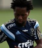 Fabio Menotti/Ag�ncia Palmeiras