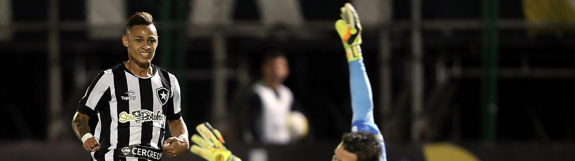 Neílton supera o goleiro do Palmeiras e marca para o Botafogo