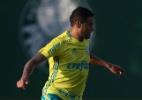 C. Xavier volta a treinar com bola e pode reforçar o Palmeiras em Recife