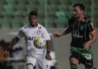 Kieza faz 4º gol em 4 jogos e Vitória arranca empate contra o América-MG - Thomas Santos/AGIF