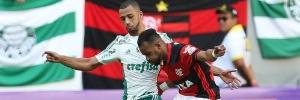 Cesar Greco - 05.jun.2016 / Ag Palmeiras / Divulgação