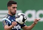Reprodução site oficial do Palmeiras