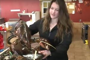 Vegano paga um dinheirão em lagosta gigante apenas para libertá-la (Foto: Reprodução)