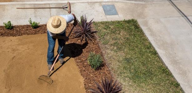 Luis Uribe, dono da empresa de paisagismo, A Greener Tomorrow, trabalha em quintal em Culver City, na Califórnia