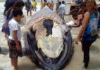 Filhote de baleia jubarte encalha e morre no litoral do Rio Grande do Norte (Foto: Heldene Santos/Divulgação)