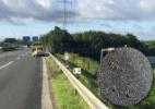 Gosma de caracóis provoca acidente em estrada na Alemanha (Foto: Reprodução/Facebook/Polizei NRW Bielefeld/)