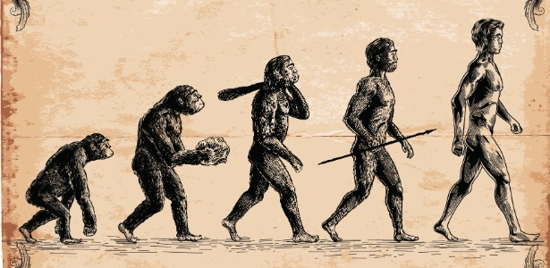O estilo de andar e a estrutura de grupo do Homo erectus eram similares às dos seres humanos atuais