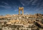 Unesco diz que Palmira está preservada em grande parte, apesar dos graves danos (Foto: Bryan Denton/The New York Times)