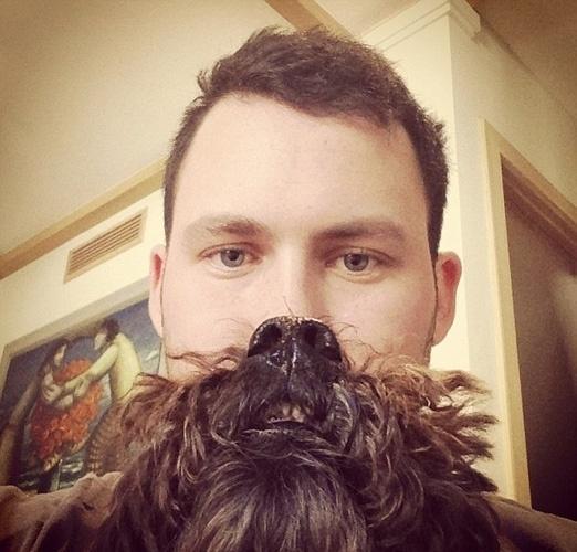 A modinha começou com donos de gatos, mas acabou também no mundo canino: donos tiram fotos usando seus bichos como se fossem barbas e publicam na internet A modinha começou com donos de gatos, mas acabou também no mundo canino: donos tiram fotos usando seus bichos como se fossem barbas e publicam na internet