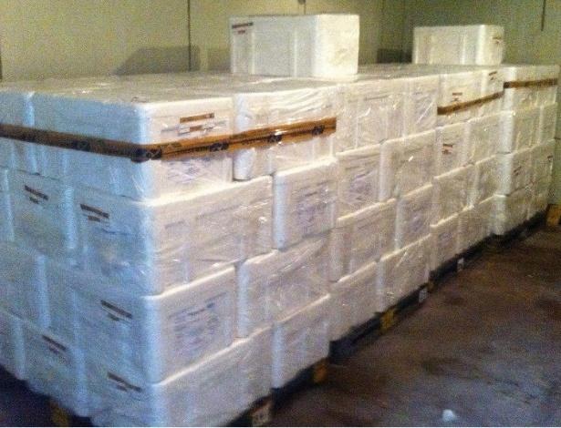 4.jun.2013 - Operação Nações Unidas, realizada pela Polícia Federal e a Interpol, prendeu 11 traficantes internacionais que atuavam no Brasil,  acusados de enviar cinco toneladas de cocaína do Brasil para a Europa --parte dela de avião, acondicionada em peixes congelados em sacos de álcool gel