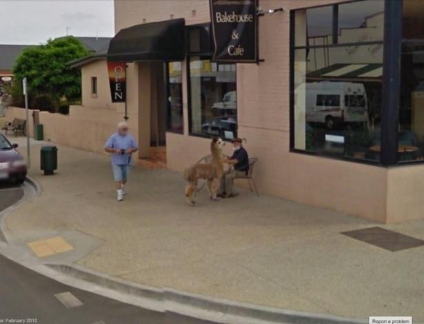 Em outro momento embaraçoso, o homem aparece sentado segurando o bicho de estimação -- no caso, uma alpaca