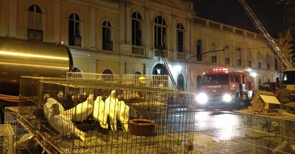 6.jul.2013 - Bombeiros e voluntários conseguiram salvar alguns animais durante um incêndio no Mercado Público de Porto Alegre