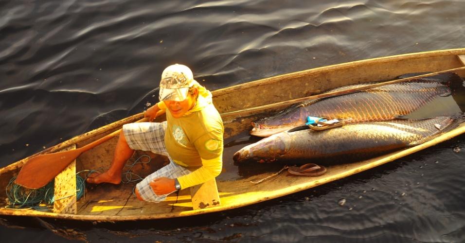Depois de pescado na comunidade de Mamirauá, o pirarucu segue para uma fábrica de salga do pirarucu (a Agroindústria de Maraã) dentro da reserva, capaz de produzir 1.500 toneladas de peixe por ano