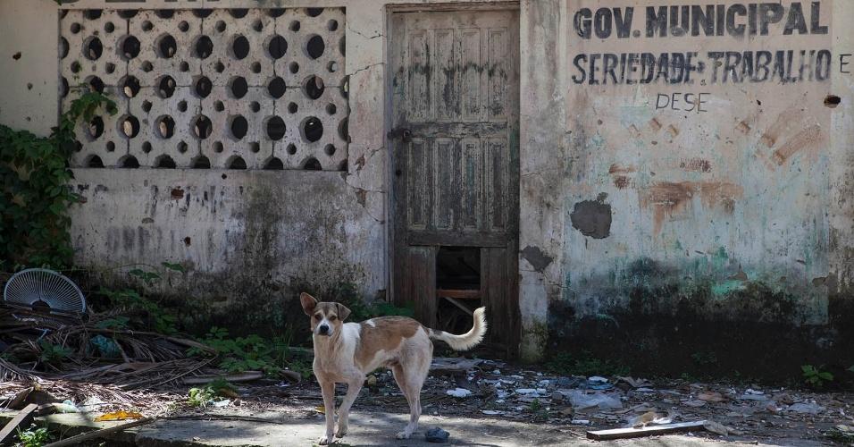 11.ago.2013 - A antiga sede da prefeitura, no bairro central do município, é a mais completa tradução do abandono que enfrenta a cidade de Melgaço, no Pará