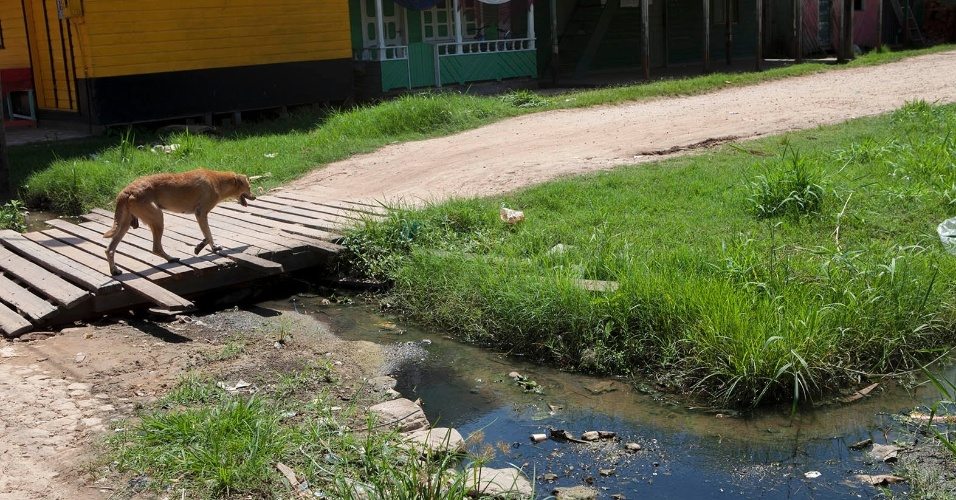 11.ago.2013 - Em Melgaço (a cerca de 300 km de Belém), esgoto a céu aberto é uma cena frequente. Estima-se que 80% das moradias do município não tenham qualquer tipo de tratamento de esgoto