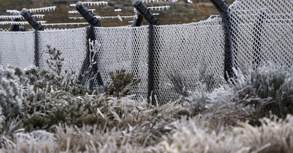 14.ago.2013 - Geada modifica paisagem em Urubici (SC) nesta quarta-feira (14). Em São Joaquim, na Serra de Santa Catarina, a neve caiu por cerca de 20 minutos pela manhã