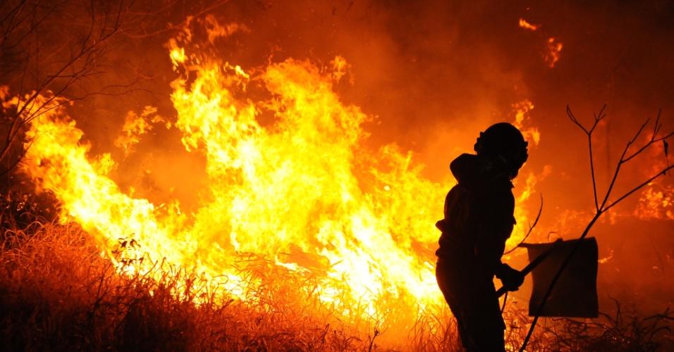 22.ago.2013 - Incêndio de grandes proporções atingiu as margens da BR-463, em Dourados, no Mato Grosso do Sul, na quinta-feira (22). O fogo durou 12 horas e deixou interditada também a rodovia MS 370. O fogo começou em uma lavoura de cana e se alastrou por vários hectares. Uma pessoa morreu. O incêndio também matou 20 cabeças de gado e atingiu reservas florestais