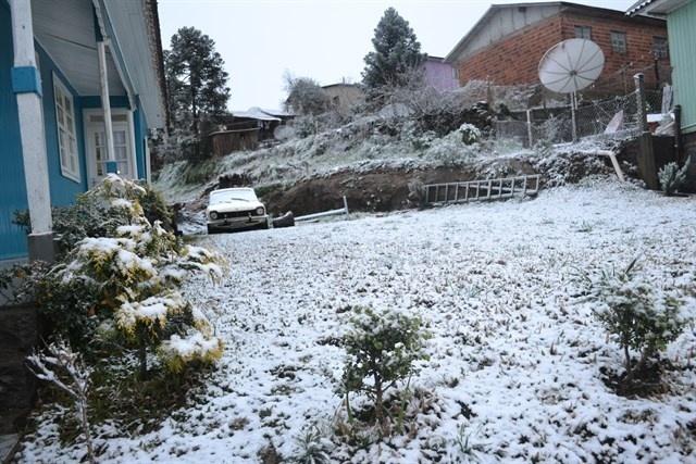 27.ago.2013 - Vegetação fica coberta de neve em São Joaquim (SC) na manhã desta terça-feira (27)