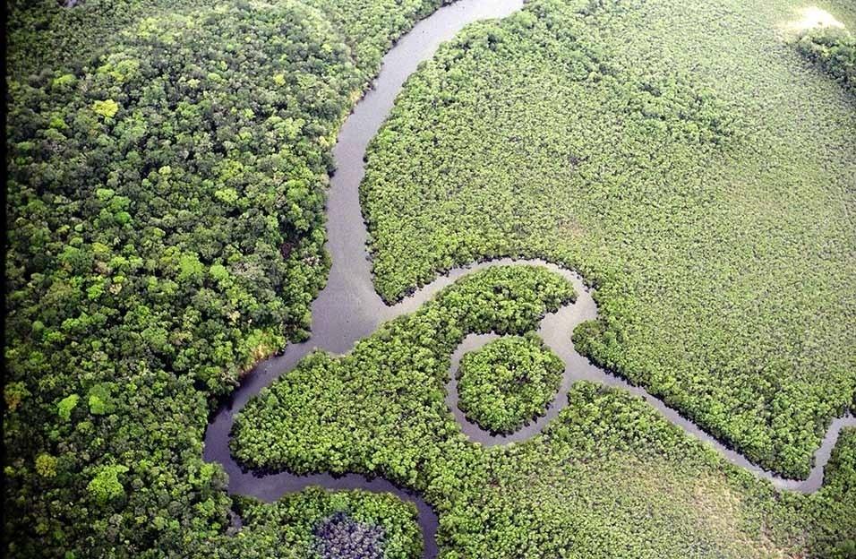 4.set.2013 - A Amazônia tem 4.196.943 milhões de quilômetros quadrados e a maior bacia hidrográfica do mundo, que cobre 6 milhões de quilômetros quadrados com seus 1.100 afluentes. O maior bioma do Brasil é fundamental para o equilíbrio ambiental e climático do planeta e a conservação dos recursos hídricos