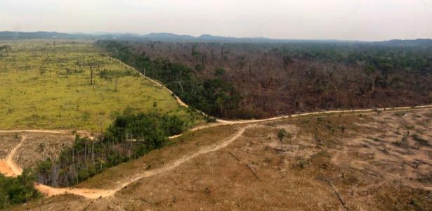 Em setembro de 2013, o Instituto Imazon detectou um aumento de 100% do desmatamento da Amazônia