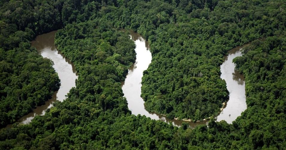 4.set.2013 - O Parque Nacional Montanhas do Tumucumaque, localizado entre o Amapá e o Pará, é uma das unidades de conservação da Amazônia. De acordo com o WWF, esse bioma é o que possui a maior extensão de territórios protegidos: são 314 unidades de conservação que representam mais de 1 milhão de hectares, mais de 25% do território brasileiro