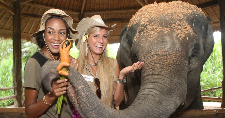 12.set.2013 - As misses De Andra Bannister (Bahamas), à esquerda, e Noemie Happart (Bélgica) posam com um elefante durante visita a safári na Indonésia