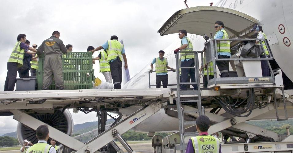 """28.set.2013 - Autoridades tailandesas carregam jaula com a panda fêmea """"Lin Ping"""", de quatro anos, para dentro de avião que vai transportar o animal para a China no aeroporto internacional de Chiang Mai (Tailândia)"""